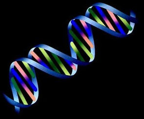 Man-Caused Changes to Our DNA Threaten Our Survival