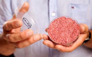 lab-grown-meat-burger-ftr-300x187