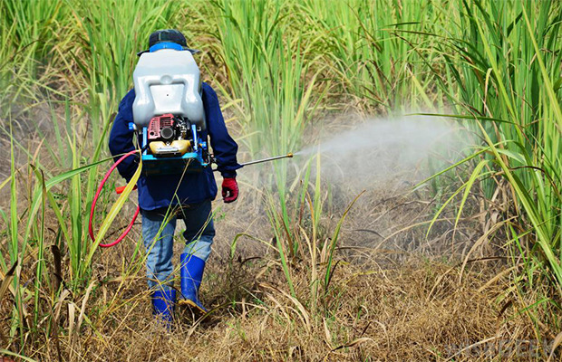 Autism Bomb: Bayer Herbicide Causes Autism, Even at Trace Levels Read more at http://expandedconsciousness.com/2014/12/04/autism-bomb-bayer-herbicide-causes-autism-even-trace-levels/#UXKrwW5kyg9EdIik.99
