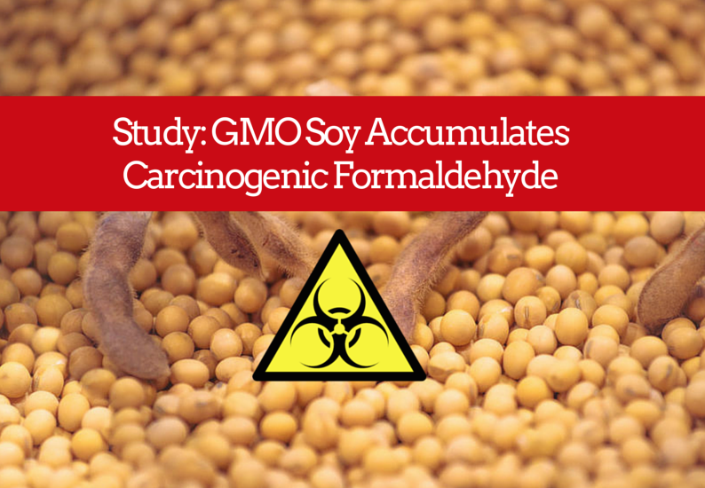 Game-Changing Study: GMO Soy Accumulates Carcinogenic Formaldehyde