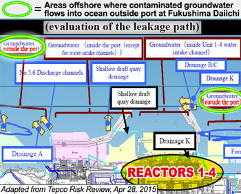 "Officials: ""Trillions of becquerels of radioactive material still flowing into sea"" at Fukushima — Map shows nuclear waste coming up from bottom of ocean far offshore — Japan TV Journalist: ""Contaminated seawater will circulate around globe… disaster like a huge cloth expanding everyday"""