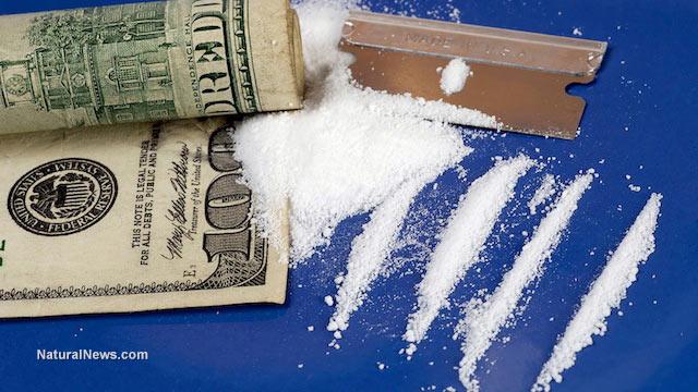 Bolivia kicks out US Drug Enforcement Agency; drug crime rates immediately plummet