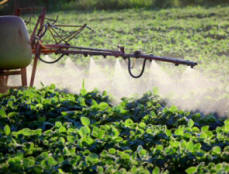 Agricultural Toxic Chemicals Support Depopulation Efforts