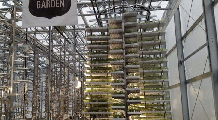 Check Out The World's Largest Indoor Vertical Farm Capable Of Producing 2 Million Pounds Of Food