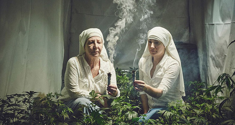 Meet the nuns who are healing the world with marijuana