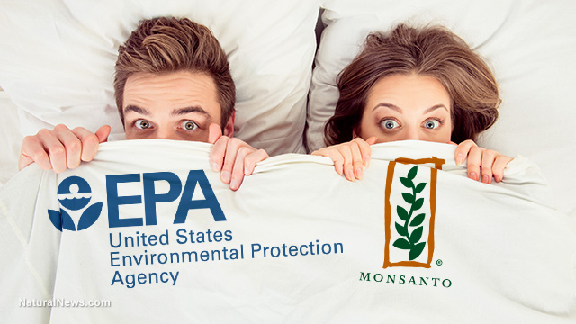 EPA corruption, Monsanto and RoundUp Litigation: Full text of Motion to Compel Deposition of Jess Rowland