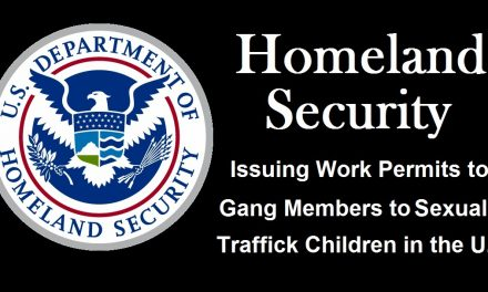 Homeland Security Whistleblower: U.S. Government Giving Permits to Gangs Coming Across the Border to Sexually Traffick Children
