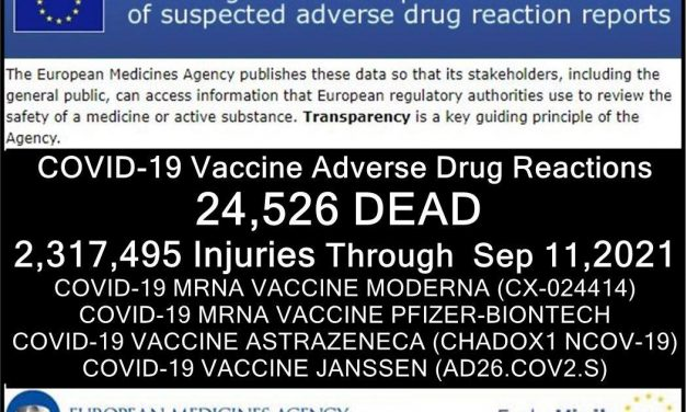 24,526 Deaths 2,317,495 Injuries Following COVID Shots Reported in European Union's Database of Adverse Drug Reactions