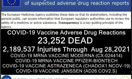 23,252 Deaths 2,189,537 Injured Following COVID Shots Reported in European Union's Database of Adverse Drug Reactions