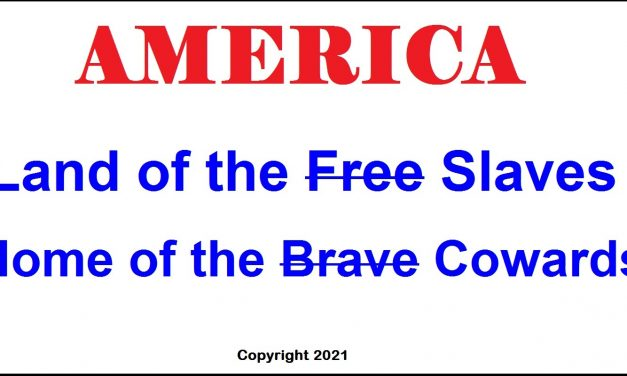 """America: Land of the Slaves and Home of the Cowards – The Entitlement Majority Call Themselves """"Victims"""""""